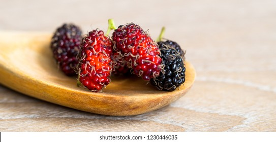 Close up group of mulberries is placed on a wooden spoon on a wooden table. Mulberry this a fruit and can be eaten it have a red and purple color.. Mulberry is delicious and sweet nature. Copy Space