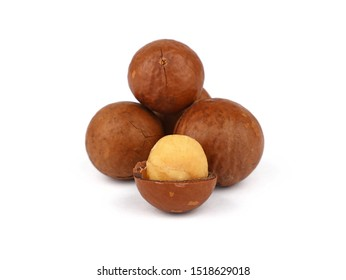 Close up group of several unshelled macadamia nuts and one open kernel isolated on white background, low angle side view
