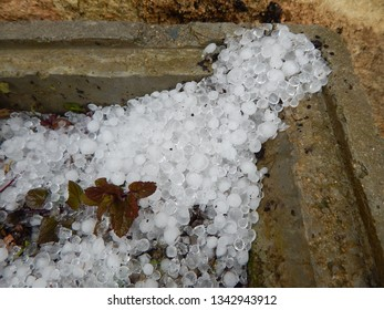 Close up of hailstones and leaves.