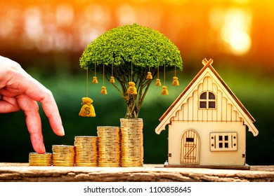 Close up of hand with climb up on a stacking gold coins and money bag of tree as destinations for growing and wooden home, Loan or saving for real estate or buy a new house in the future concept.