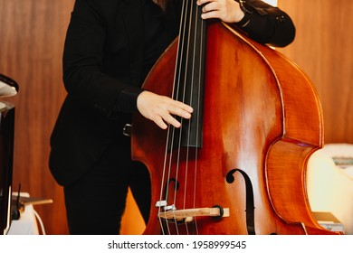 Close up hand of Contrabass player playing the double bass on the stage, classical music instrument