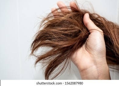 Close up hand holding dry damaged hair problem in white bathroom