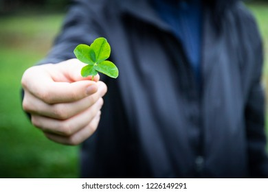 Close up of a hand holding a four-leaf clover, focus on the clover and blurred person in the background. Good luck symbol with copy space.