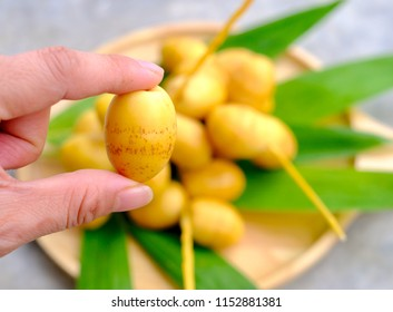Close up hand holding fresh dates palm fruit with wooden plate, Barhi or Barhee dates are a rich source of fiber, iron, potassium, B-vitamins, flavonoids and antioxidants. Taste is crispy and sweet.