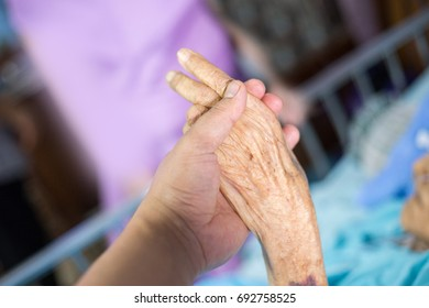 close up hand in hand of young man and grandmother for volitation to family