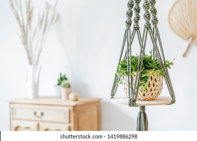 Close up of handmade macrame shelf planter hanger for indoor plants, rattan leafs on the white wall and elegant accessories. Cozy home decor. Stylish and minimalistic boho interior of living room.
