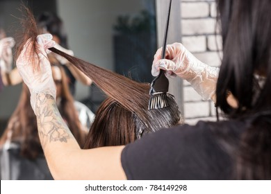 Close up of hands of female stylist hold in hand lock of brunette hair during process of dyeing in beauty salon