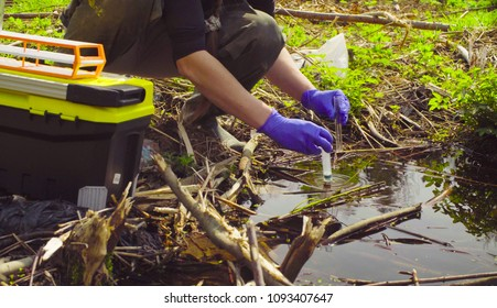 Close up hands of scientist ecologist in the forest taking sample of water in the test tube