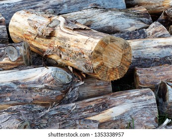Close Up of haphazardly stacked pile of fire wood
