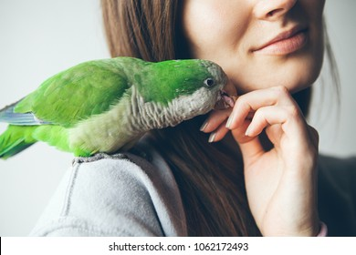 Close up of happy smiling young woman with parrot sitting on her shoulder. Exotic animals. Portrait of young female with shaming and friendly Monk parakeet