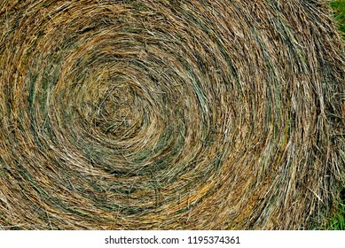 Close up of a Hay Round Bale