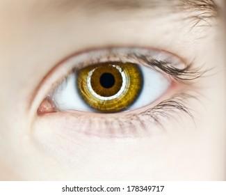 close up of hazel eye with round light