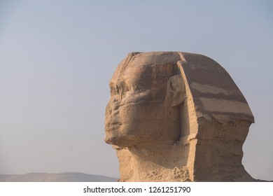 close - up of head of sphynx isolated on blue sky