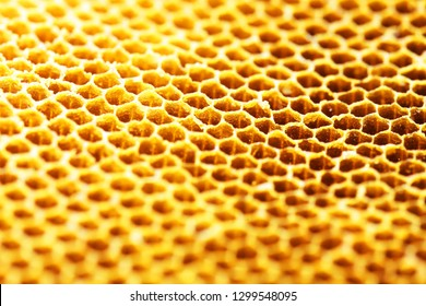 close up of hexagon texture golden bee hive background.