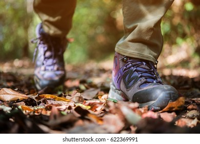 Close up of hiking boots on the forest.