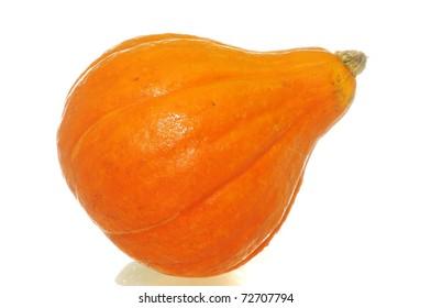 Close up of a Hokkaido Pumpkin