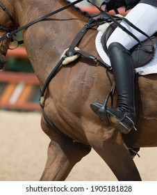 close up of horse neck and horseback riders leg showing proper position when show jumping or cantering around horse show ring