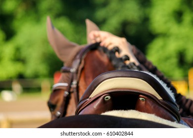 Close up of horse saddle on the horse back during horse show