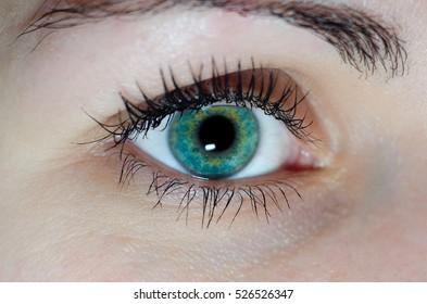 Close up human extreme macro green eye with natural eyelash looking straight. Macro shot.