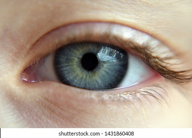 Close up of the human eye