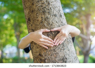 close up human hand is hugging the tree
