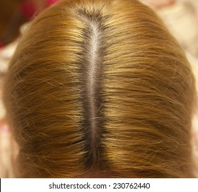 Close up of a humans head,  thick hair