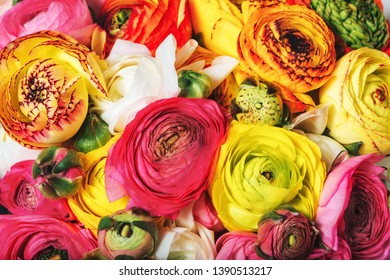 Close up image of colorful bouquet of colorful buttercup flowers