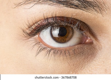 Close up image of female brown eye