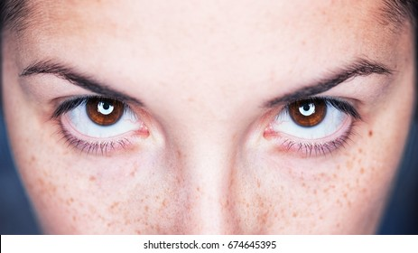 Close up image of female brown eyes - Intense magnetic look