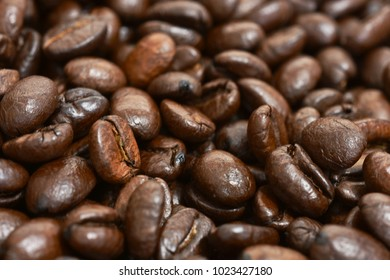 A close up image of fresh roasted coffee beans.