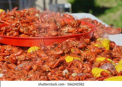 Close up image of freshly boiled hot Louisiana crawfish spread on outdoor table and in serving tray with potatoes and corn on the cob.