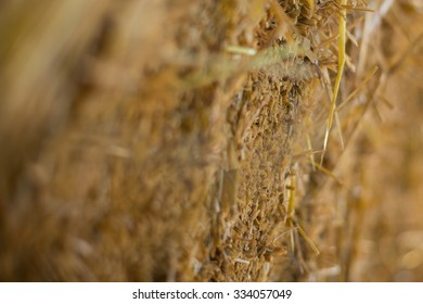 Close up image of a haystack