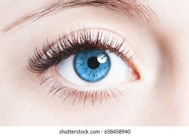 Close up image of human eye