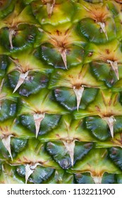 Close up image of pineapple. Graphic-like image of the pineapple skin.