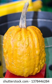 Close up image of a pumpking