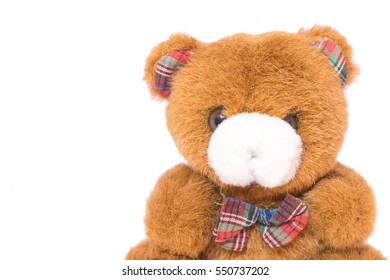 Close up image of teddy bear toy on white background.