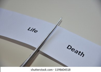 """A close up image of the word """"life - death """""""