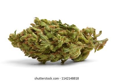 Close up of indica prescription and recreational medical marijuana flower bud isolated on white background