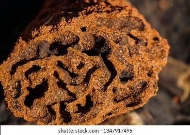 close up of the inside of a Red termite mound, northern territory, australia