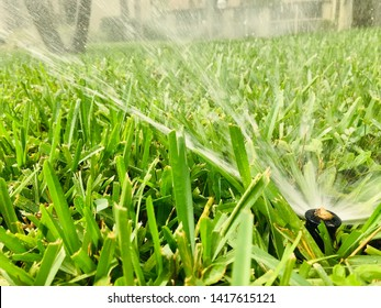 close up irrigation system watering green grass landscape