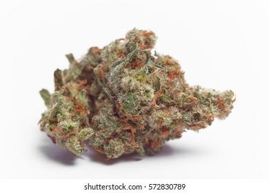 Close up of Jack Herrer Marijuana Bud