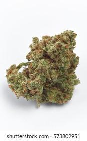 Close up of Jack Herrer medical marijuana bud