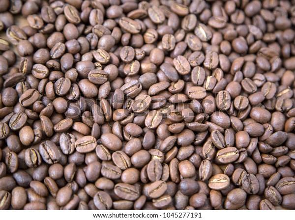 Close Jamaica Blue Mountain Coffee Beans Stock Photo (Edit