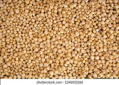 Close up of Jowar (Sorghum) as background.