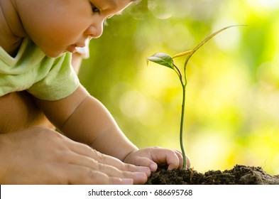 Close up Kid hand and father planting young tree over green and sunlight background