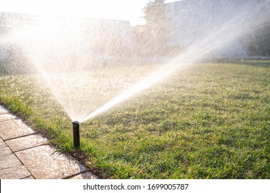 Close up of lawn irrigation. Automatic sprinkler system watering the lawn close-up.