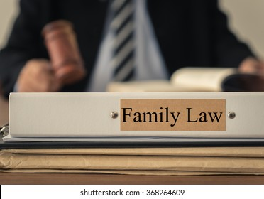 close up lawsuit folder of family law with the judge is considering a lawsuit in background. concept of family law.