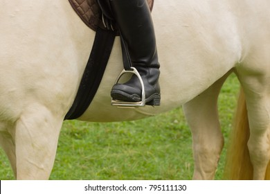 Close up of leather riding boots in stirrups on a cremello coloured thoroughbred horse