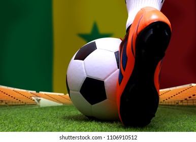 Close up legs and feet of soccer player or football player walk on green grass ready to play match on national Senegal flag background.