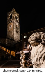 close up of the lion of the Contarini fountain with in the background the Campanone of Città Alta in Piazza Vecchia in Bergamo, vertical night image